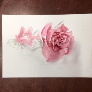 ベルサイユの薔薇